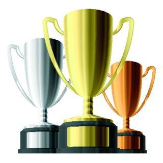 Area Humorous Speech & Table Topics Contests Begin